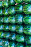 Big sweet green watermelons. In Thailand Stock Images