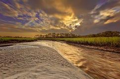 Big Talbot Island. Florida. Nassau County. Sunrise on the salt marshes stock image