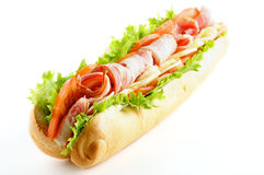 Big Tasty Baguette Sandwich Stock Image