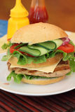 Big tasty burger Royalty Free Stock Photos