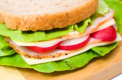 Big and tasty sandwich Stock Photography