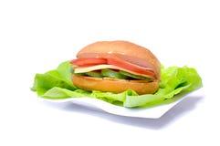 Big and tasty sandwich Royalty Free Stock Photo