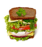 Big Tasty Sandwich Royalty Free Stock Image