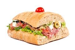 Big tasty sandwich Royalty Free Stock Image