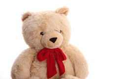 Big teddy bear Royalty Free Stock Images