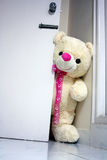 Big Teddy Bear Opening the Door. Big teddy bear knocking on the door asking Are you in there Stock Photo
