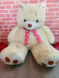 white teddy bear for your valentine royalty free stock photo