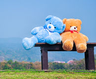 Big teddy bears  sitting on wood chair Stock Photography