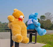 Big teddy bears  sitting on wood chair Royalty Free Stock Photography
