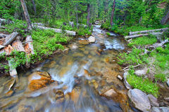 Big Tepee Creek in Wyoming. Big Tepee Creek flows through the Bighorn National Forest in Wyoming Royalty Free Stock Photography