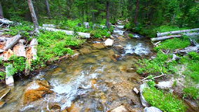 Big Tepee Creek in Wyoming stock footage