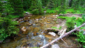 Big Tepee Creek in Wyoming Royalty Free Stock Images
