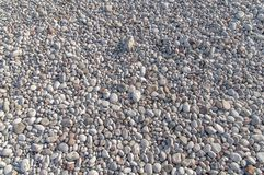 Big texture of small pebble stone nature at beach on sunny day. Natural stone background Royalty Free Stock Photography
