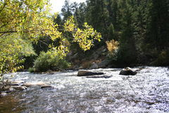 Big thompon river in the fall. Stock Photography