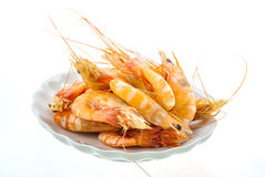 Big tiger shrimps Stock Photos