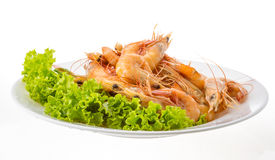Big tiger shrimps Royalty Free Stock Photography