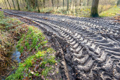Big tire marks on a slippery path in the woods Royalty Free Stock Images