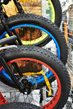 Big tire on wheels of bicycle in shop Royalty Free Stock Photos