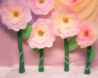 Big Tissue Paper Flower Props. Cute huge tissue paper flowers for props Stock Photography