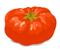 Big tomato 1 Royalty Free Stock Image