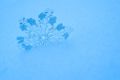 Big toy snowflake in the snow in blue Stock Photo