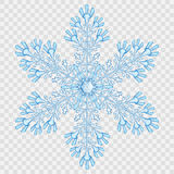 Big translucent crystal snowflake Stock Images