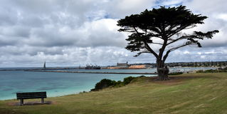 Big tree and a bench in the Vested Land Park. Portland beach, Lee breakwater and harbour in the background on a cloudy day royalty free stock photography