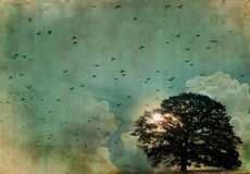 Big tree and birds. On colorful old paper background and copy space Royalty Free Stock Photos