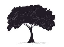 Big tree drawing silhouette, vector stock illustration