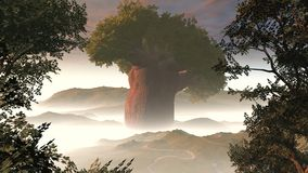 Big tree in fog Royalty Free Stock Photo