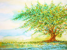 Big tree in grass field and blue sky, watercolor painting on paper. Hand drawn, minimal Royalty Free Stock Photo