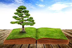 The big tree growth from a book. With beautiful sky background Royalty Free Stock Photos
