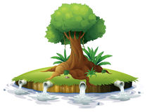 A big tree in an island Stock Photo