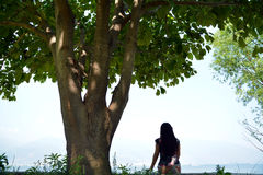 Big tree by lake landscape girl sits Royalty Free Stock Photography