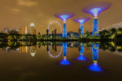 Big Tree light show night time, Singapore Stock Photography