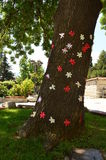 Big tree lined with colorful paper flowers Stock Photos