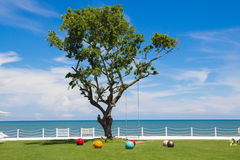A big tree among the little colorful balls. A big tree among the little colorful balls is so beautiful on the green grass view royalty free stock image