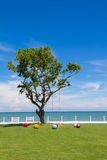 A big tree among the little colorful balls on the morning. It 's so beautiful view royalty free stock photo