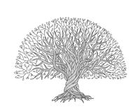Big tree with roots for your design Stock Photos