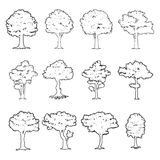 Big tree silhouettes Stock Photography