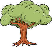 Big Tree Vector Stock Image