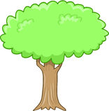 Big Tree Vector Illustration Royalty Free Stock Photo