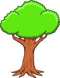 Big Tree Vector Illustration Royalty Free Stock Image