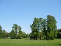 Big trees & blue sky. Chantilly castle park - Castle of Chantilly near Paris - France Royalty Free Stock Photo