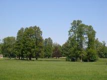 Big trees & blue sky. Chantilly castle park - Castle of Chantilly near Paris - France Stock Photo