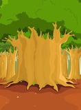Big Trees In The Forest. Illustration of a cartoon forest with big trees for nature background Royalty Free Stock Photos