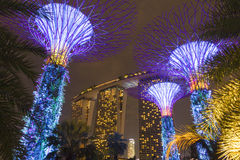Big trees at Gardens by the Bay Stock Image