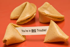 Big Trouble Fortune Cookie Stock Image