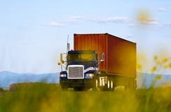 Big truck with container view through yellow flowers Royalty Free Stock Photo