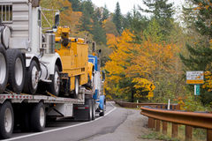 Big truck transports other trucks on flat bed trailer in yellow royalty free stock photo